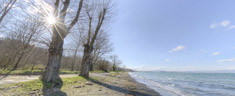 Immagine del virtual tour 'Lago di Bolsena '